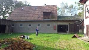 Der_Rinderstall
