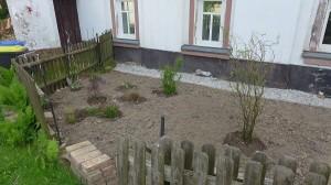 die ersten Pflanzen im Vorgarten