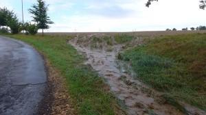 die Reste vom Sturzbach (bestimmt 10 min nach dem Regen)